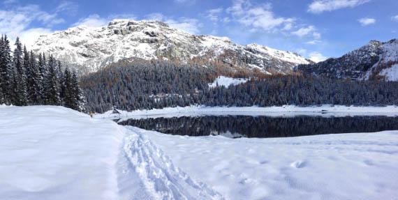 Inverno – Il comportamento delle carpe