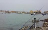 Pesca con la bolognese a fondo in mare – Azioni di pesca