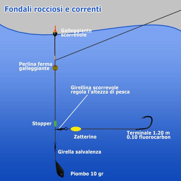 Fondali rocciosi e Correnti - Pesca in mare