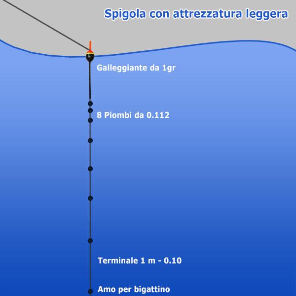 Spigola con montatura leggera - Pesca in mare
