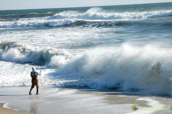 L'inverno ed i predataori di mare