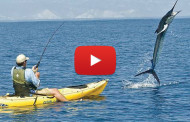 Pesca di marlin da Kayak – Video