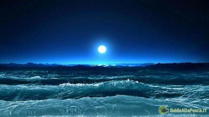 La luna e le maree