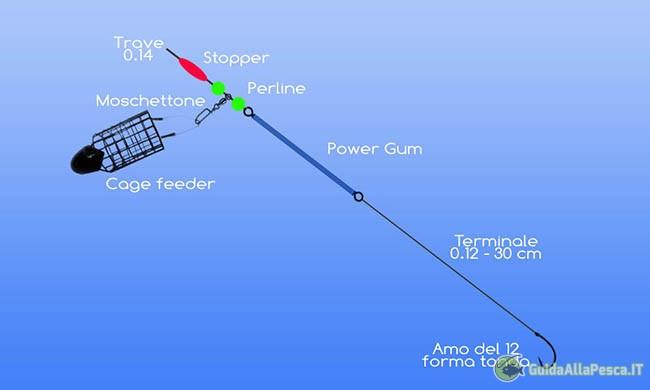 montatura-per-pesca-carassio-in-mare-e-dighe