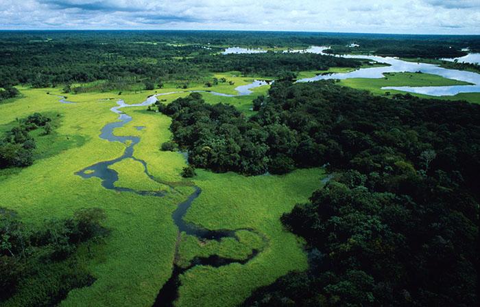 Pescare in Amazzonia